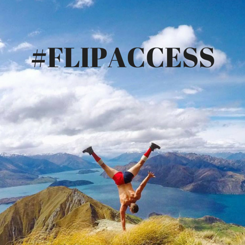#FLIPACCESS (2).png