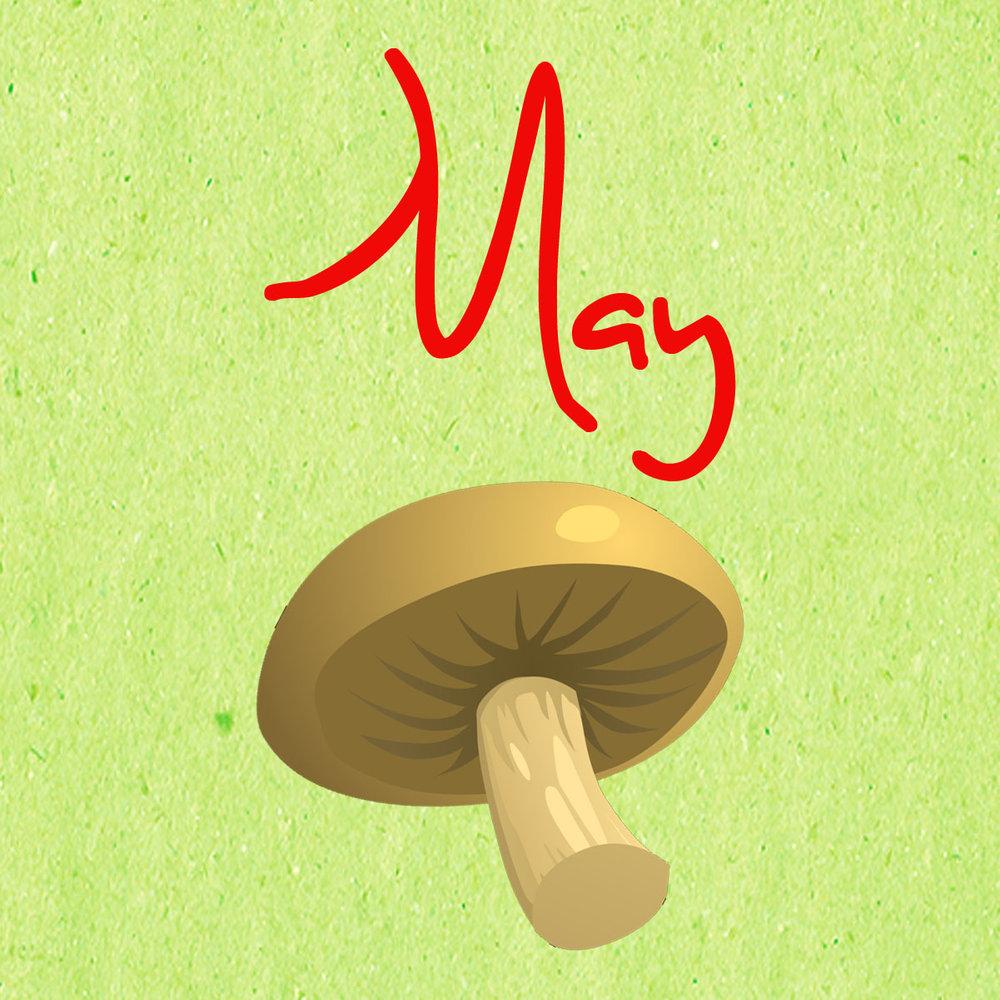 maypic.jpg