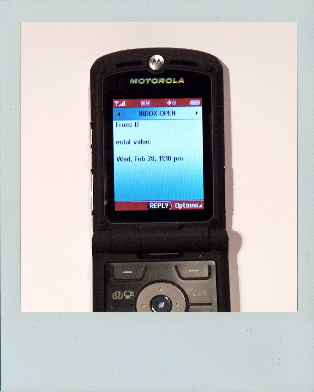text31.jpg