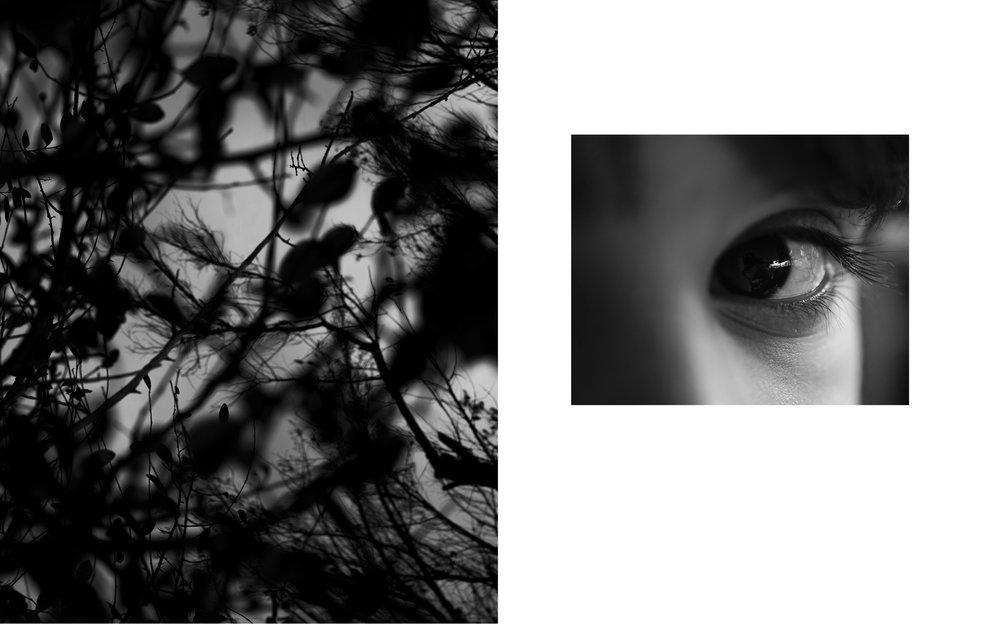 Immanence-4.jpg