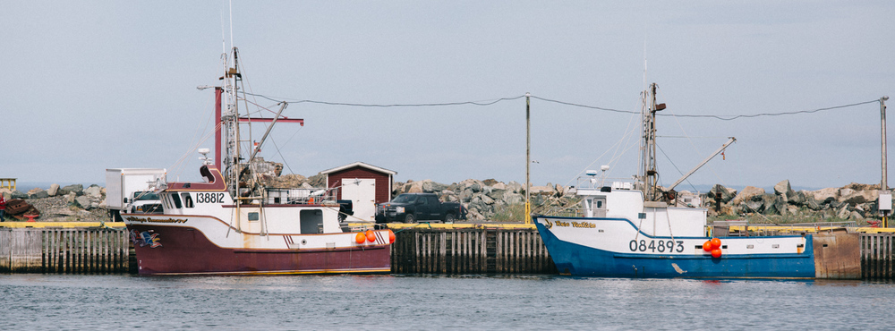 Bonavista's Harbour, June, 2016.   Photo by Marc Lafrenière © 2016.