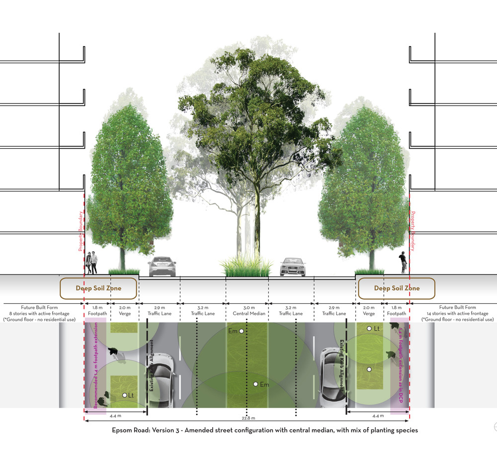 Section and Plan view of Epsom Road streetscape proposal