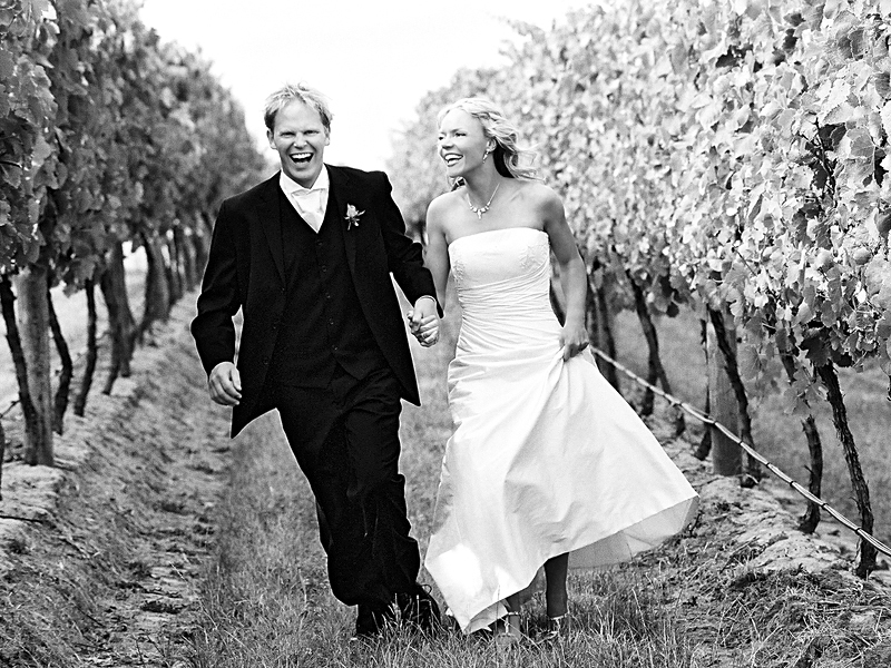 Winery weddings in outer Melbourne