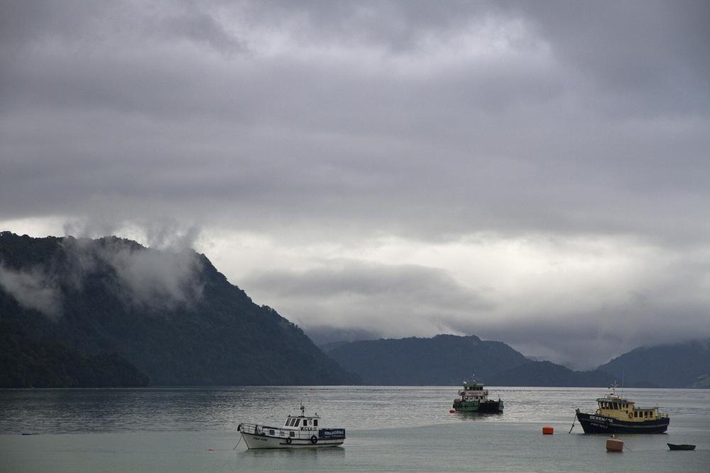 Carretera Boats.jpg