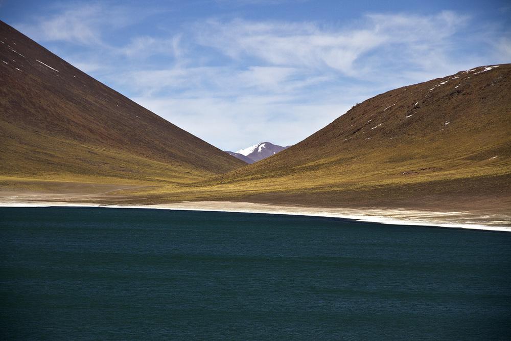 Laguna Miscanti.jpg