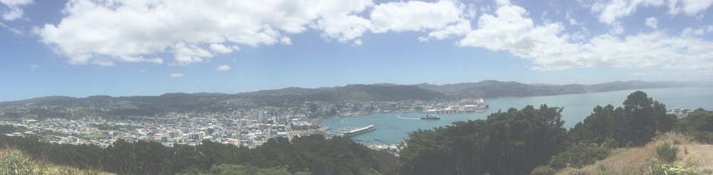 There are some easy yet rewarding day hikes around Wellington.  Bust your ass for a bit and get an epic view like this.