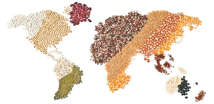 map of world in grains, lentils.jpg