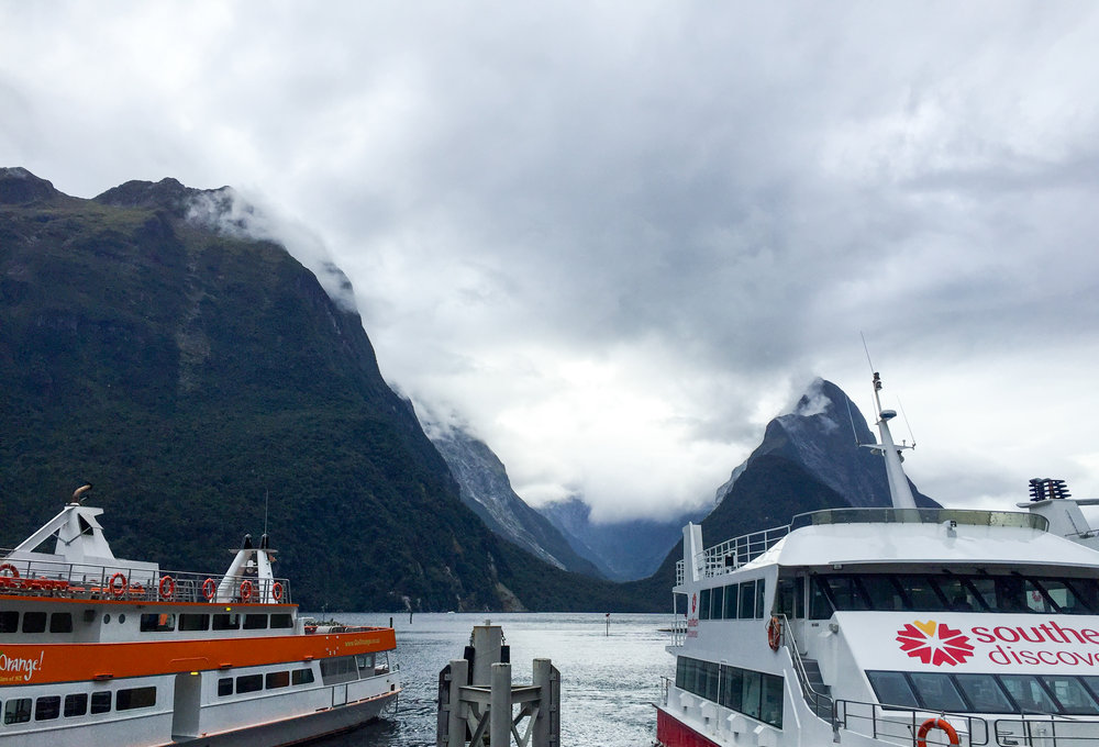 Milford Sound cruise operators docking at the cruise terminal