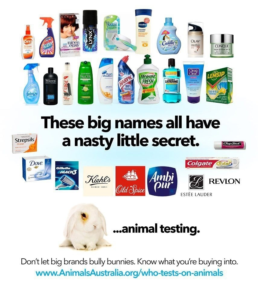 Animal Testing Products.jpg