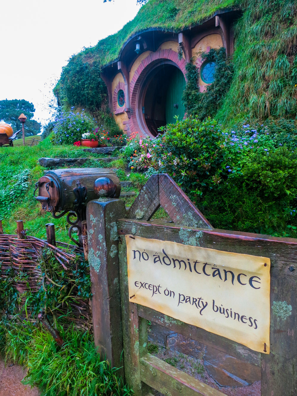 Hobbiton -- a North Island fairy tale