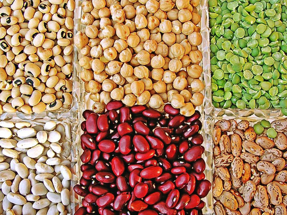 vegan beans.jpg