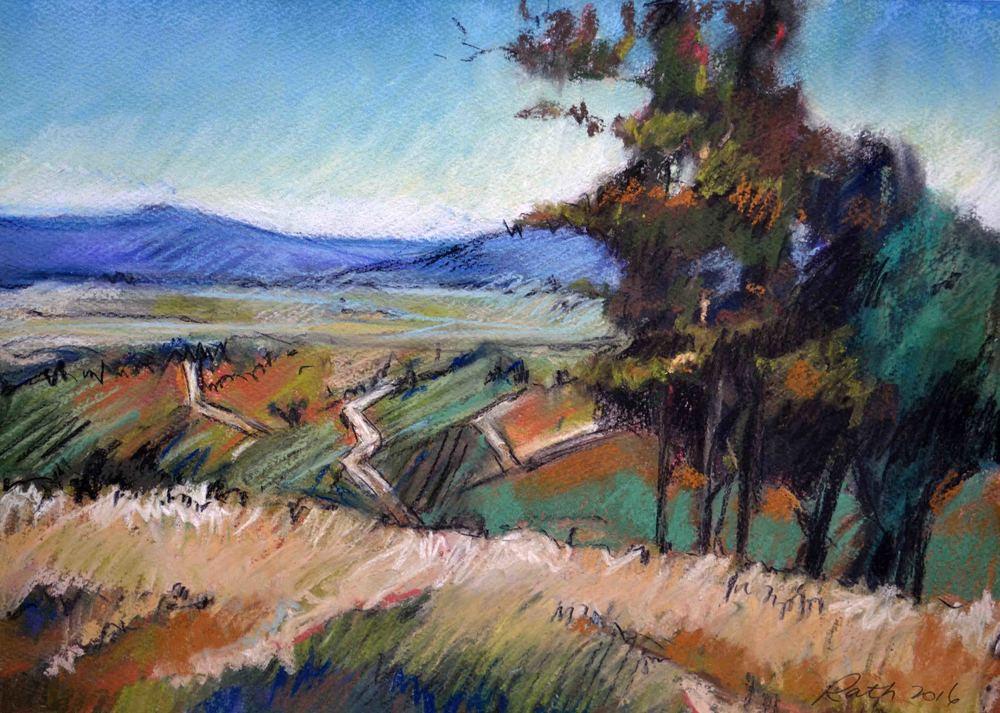 Towards Drayton's Vineyard, 2016