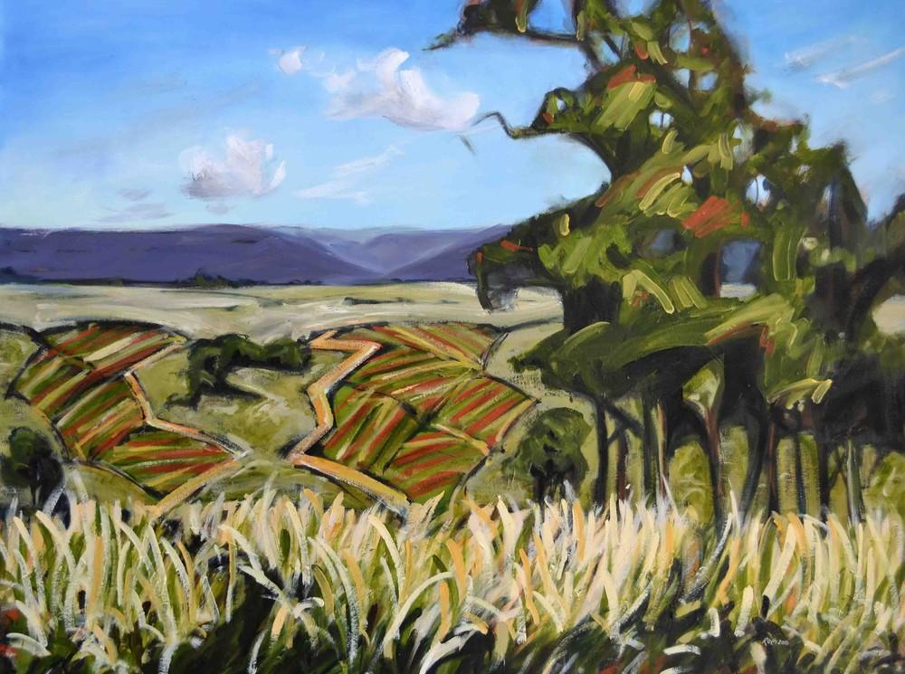 Towards Draytons Vineyard, 2016