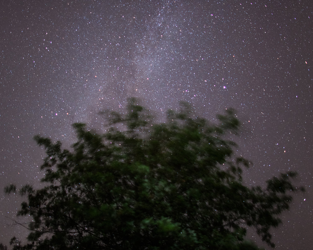 Oak and The Milky Way, Baldwin City, Kansas, 2014