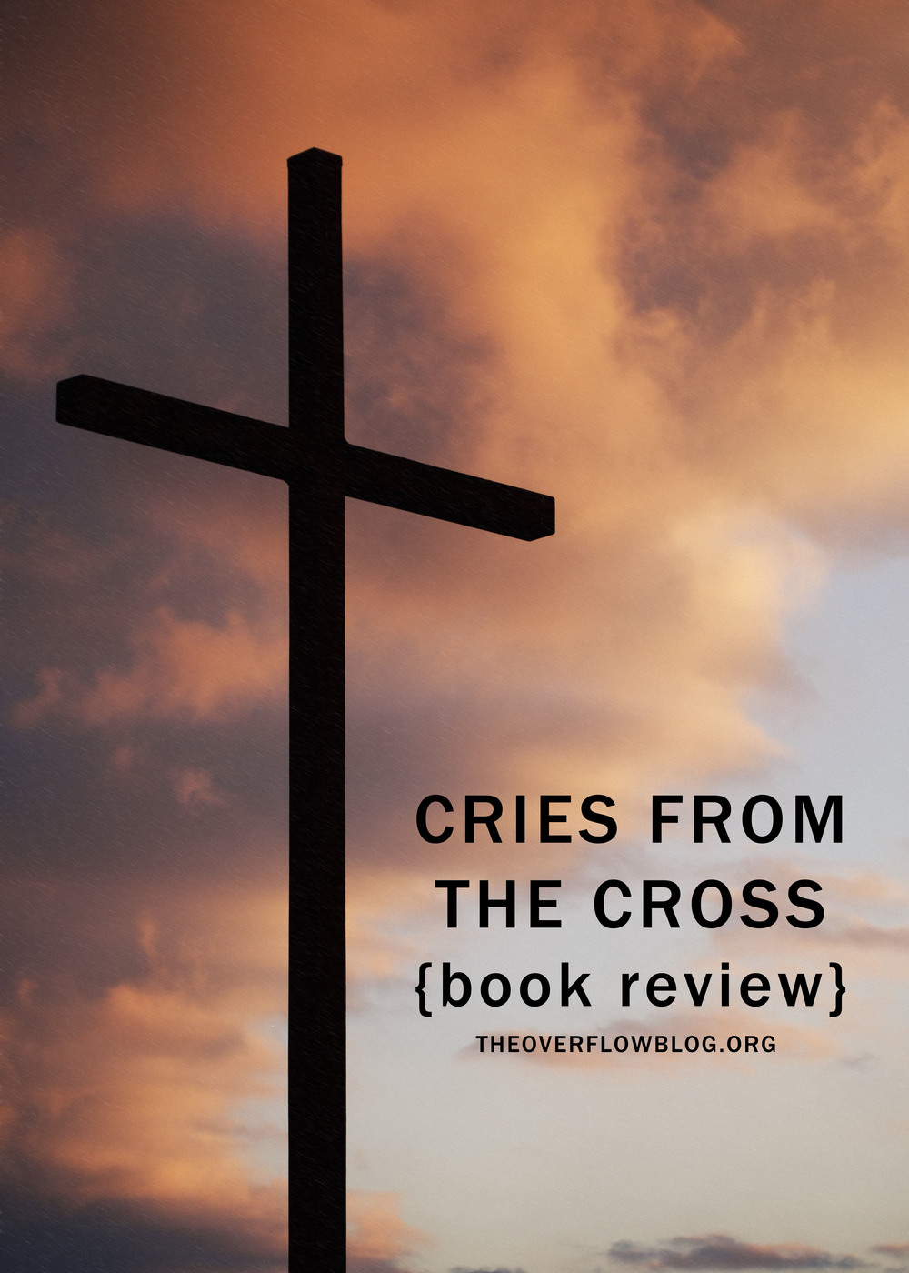 Cries from the Cross (book review)