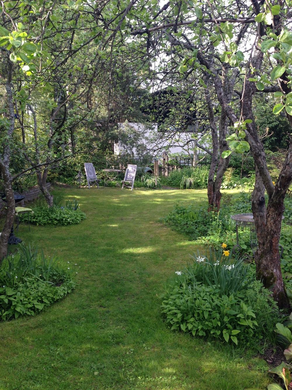 Kuntosalina toiminut puutarha kauniina,kuten aina.