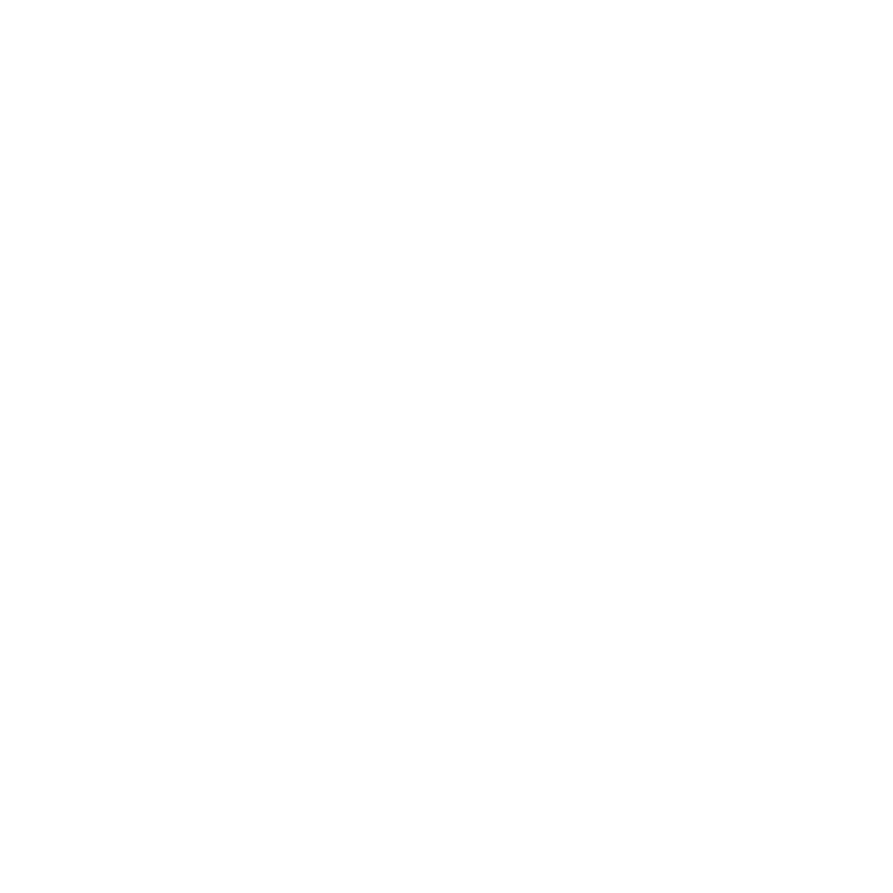 JSNBAGS_LOGO_2017_white.png