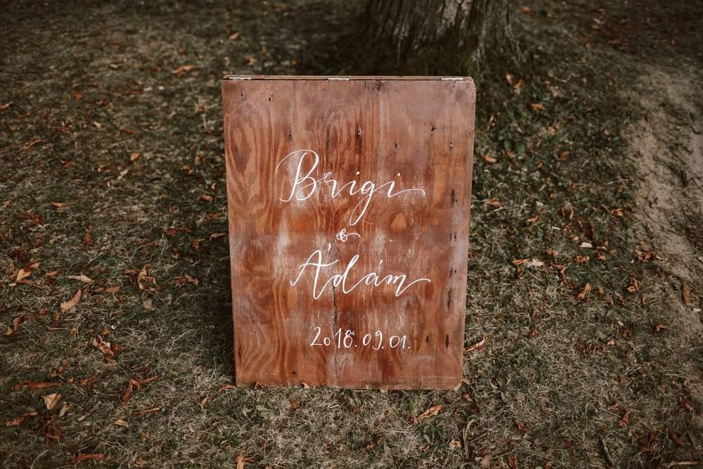 1824-Brigi+Adam-wedding-398-w.jpg