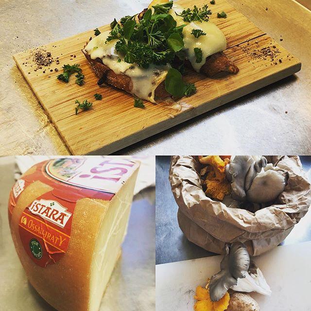 Bienvenida - Vi håller öppet som vanligt hela veckan - kom och prova på vår goda Vidsvamps toast #ostronskivling #kantarell #skogschampinjon #ossauirraty #höstigtvärre #tapasbyriver