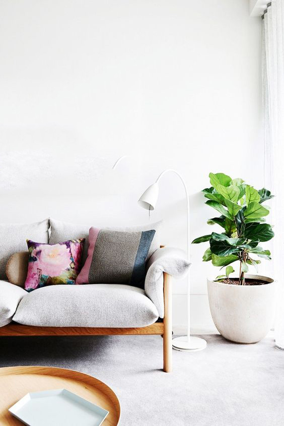 beautifully finished furniture + bare walls + simple floor + sheers and the fiddle leaf = perfectio.