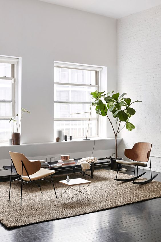 It makes the perfect corner plant, cause of its narrow spindly trunk that opens into an umbrella of green. Also love the subtle texture of exposed brick as the backdrop to the plant.