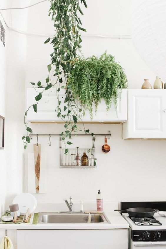 love how much drama a simple fern creates in this otherwise straight forward white kitchen and white window ledge seating corner(right). It also compliments the money plant twining down, creating an aesthetic that feels effortlessly graceful.