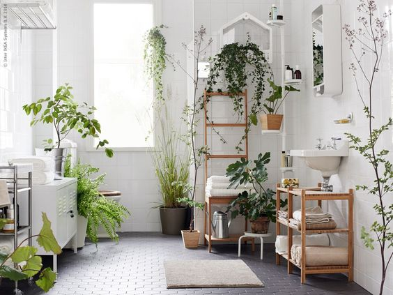 who doesn't love well lit bathrooms, that house a wide variety of plants as seamlessly as here. wood, plants, grey and whites! <3