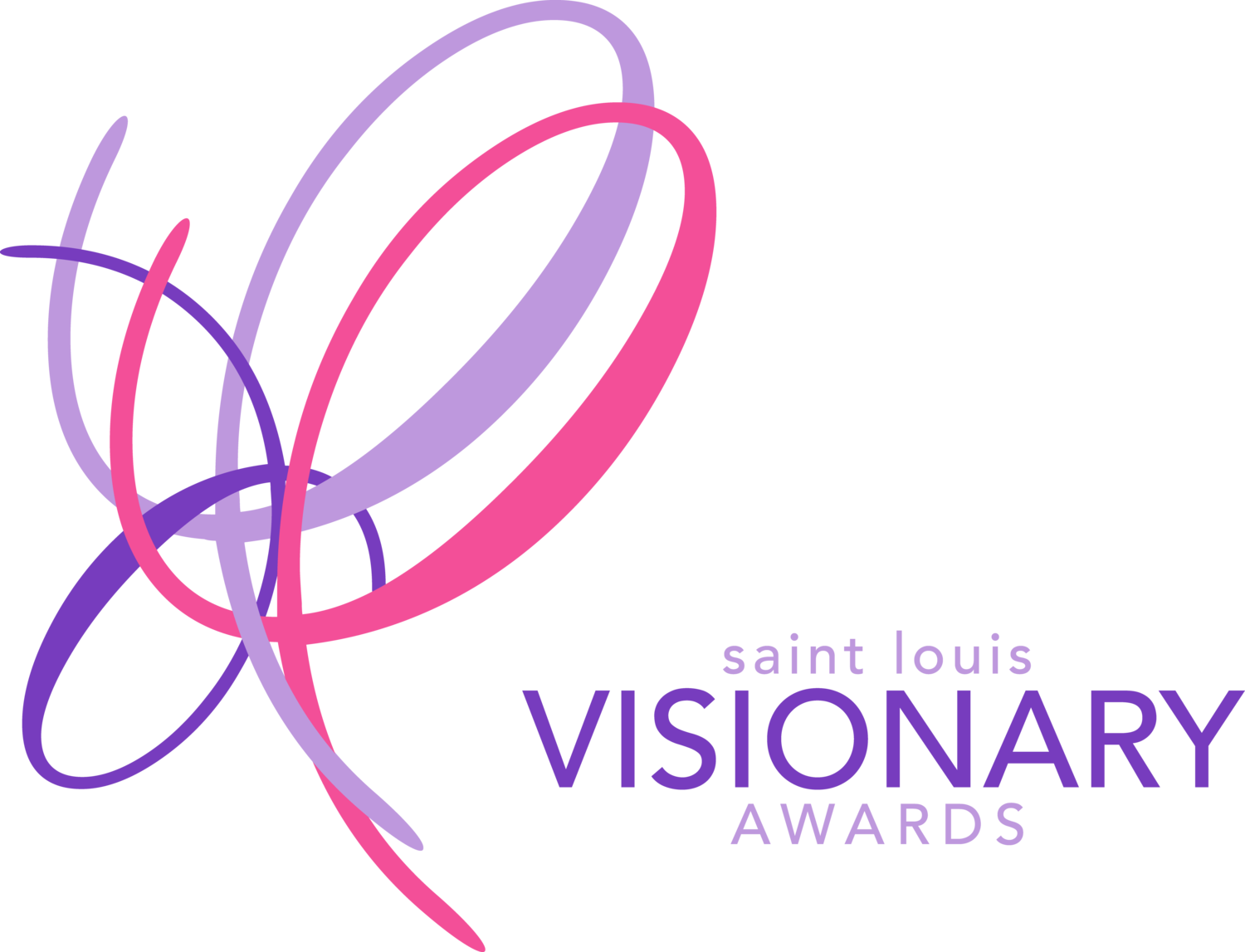 Saint Louis Visionary Awards