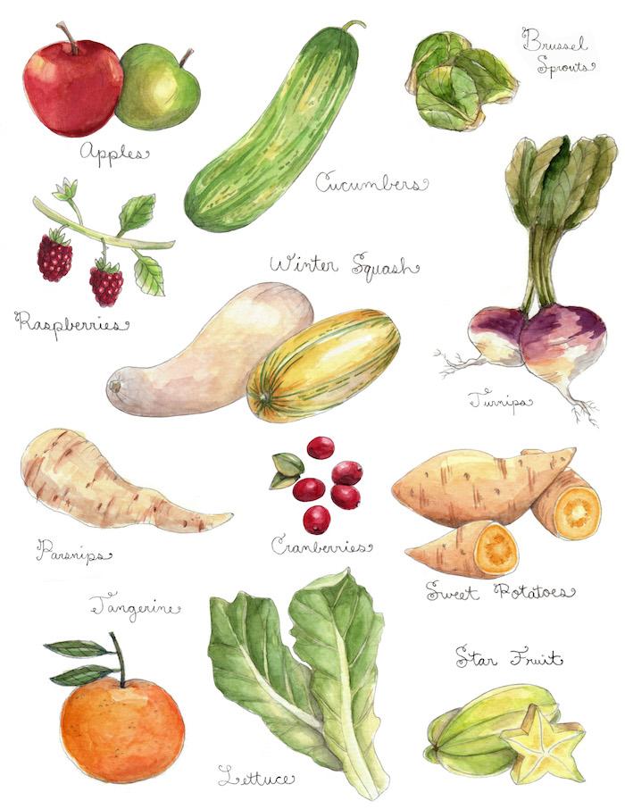 fruitveggie2 copy.jpg
