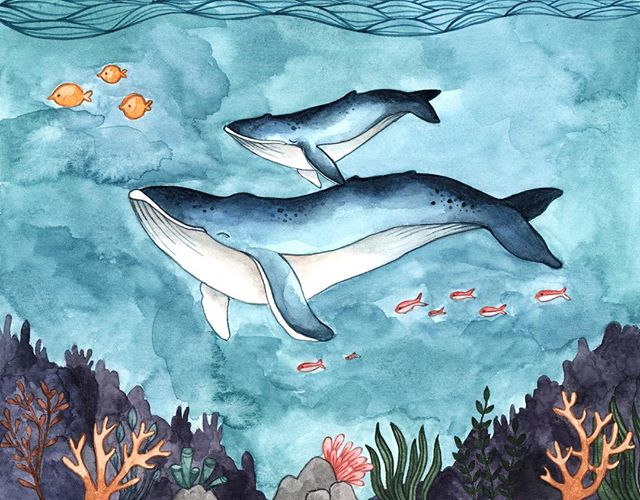 Finally getting back to work on my Endangered Species calendar. I'm super excited for this and looking forward to learning a lot in the process. I have 3 done so far, just 9 more to go! 🐋  Speaking of oceans (kinda), I'm working on reducing the amount of plastic I use in my business. How would you feel if you ordered a card from me and it came without the plastic sleeve? Would you be into that? Perhaps I could offer an option to include the plastic sleeve for those who want that extra protection. What are your thoughts? How do you feel about plastic sleeves? Does it deter you from buying cards at the store that don't come in plastic? I'd love to know! Thank you for your input 🐳