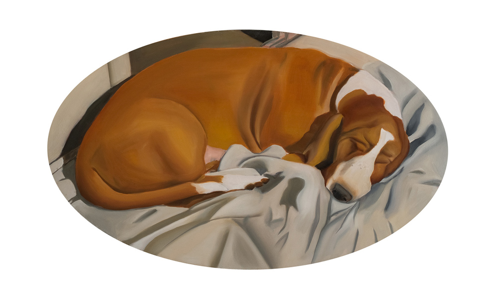 Sleeping Dog, oil on wood <br> 51 x 88 cm, 2011
