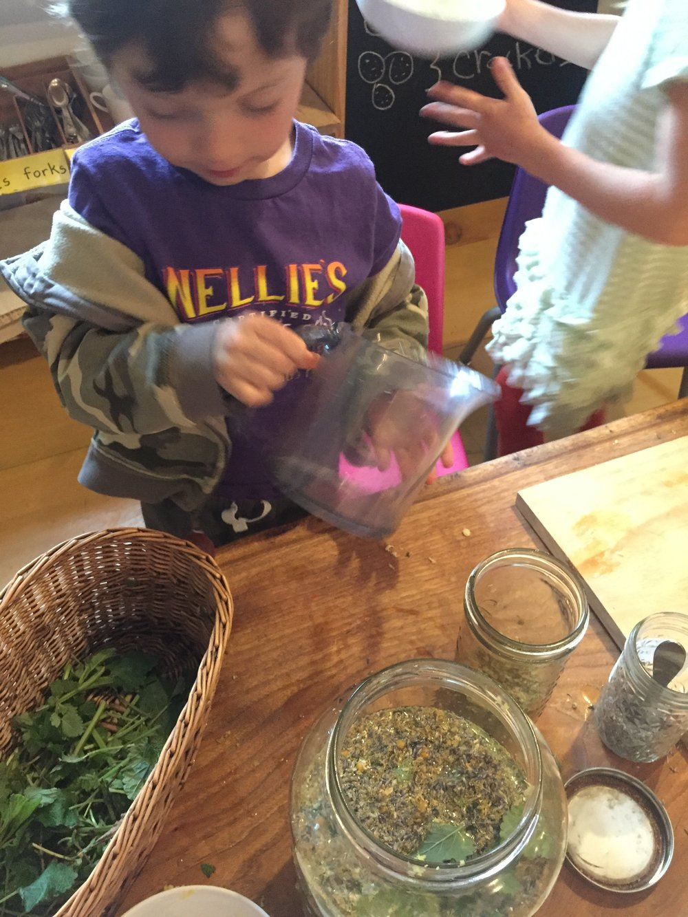 Making happy potion with some of our harvested lemon balm