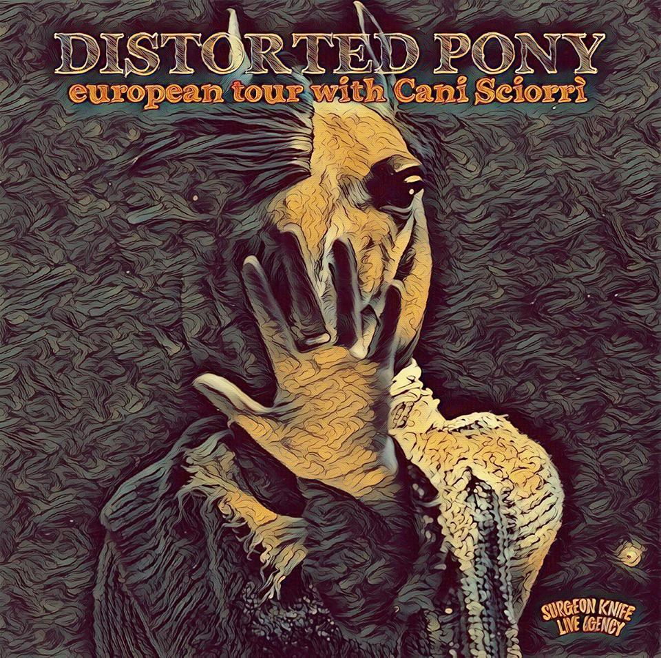 "Just Announced! LM is back with 90's noise pioneers DISTORTED PONY for their ""First and Final"" Euro Tour. June/July 2018: ITALY, SPAIN, FRANCE, BELGIUM, NETHERLANDS, POLAND, & GERMANY.  16/06 IT, Bologna - Freakout Club 17/06 IT, Cuneo - Birrovia 19/06 ES, Barcelona - Sala Begood 20/06 ES, Tolosa - Bonberenea 22/06 FR, Rennes - Mondo Bizarro 23/06 FR, Plougonver - Dibar 24/06 BE, Bruxelles - Magasin 4 25/06 FR, Le Havre - Mc Daid's 26/06 NL, Dordrecht - DS 17 28/06 PL, Poznań - U Bazyla 29/06 DE, Berlin - Urban Spree - Berlin 30/06 DE, Hamburg - Hafenklang 01/07 DE, Lärz - Fusion Festival  Additionally, Distorted Pony's classic ""Instant Winner"" LP will be reissued through Poland's #AntenaKrzyku label in May 2018!"