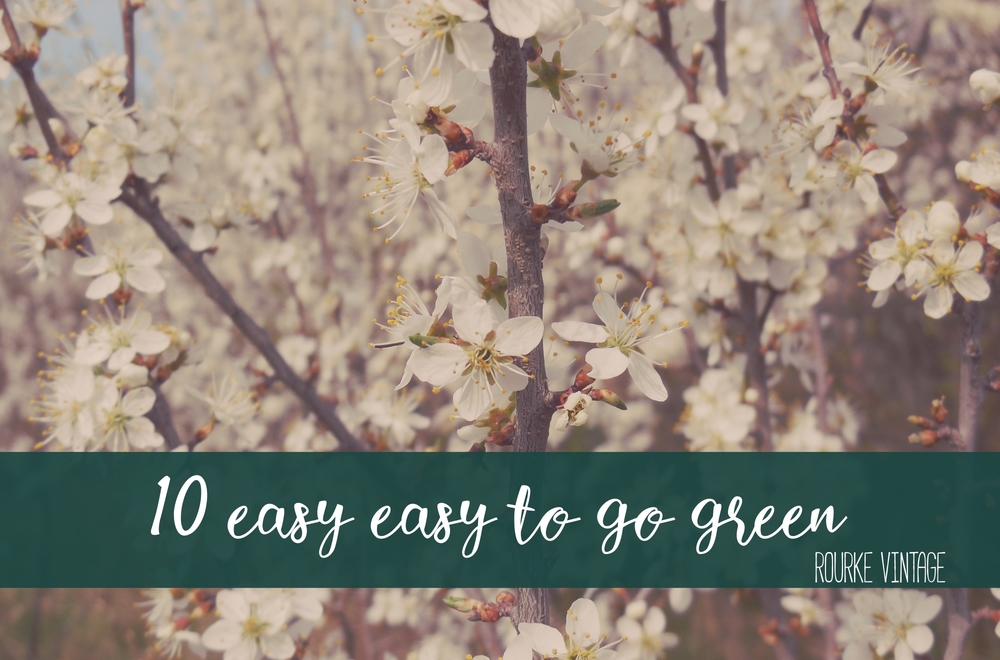 10 Easy Ways to Go Green | Rourke Vintage