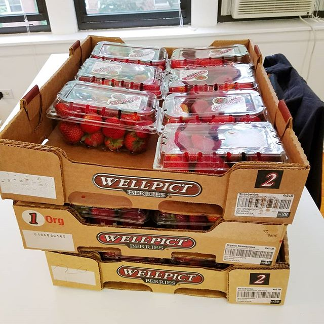 Proud owner of 24 pounds of strawberries (now down to 19 but still). Anyone know any good recipes? . PS I got 3 cases for $3 because Stanley's is the best grocery store ever and these guys are def on their way out. Nothing a good wash & trimming can't take care of.