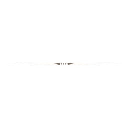 separator line simple.png
