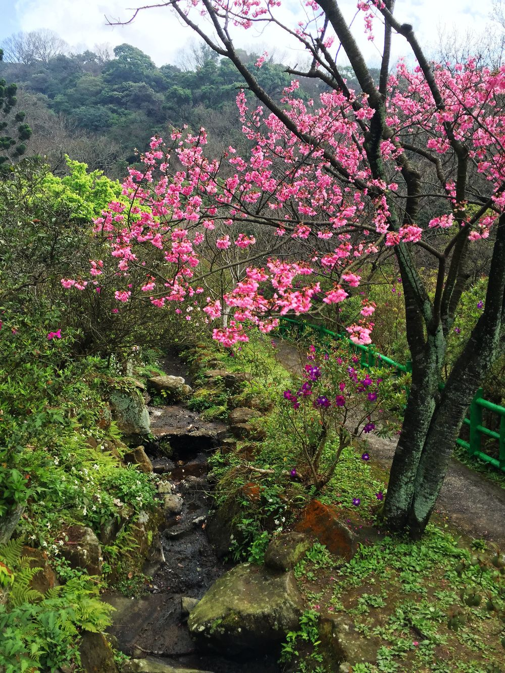 Taipei 037
