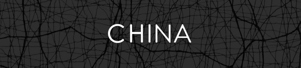 China Cover JPG.jpg