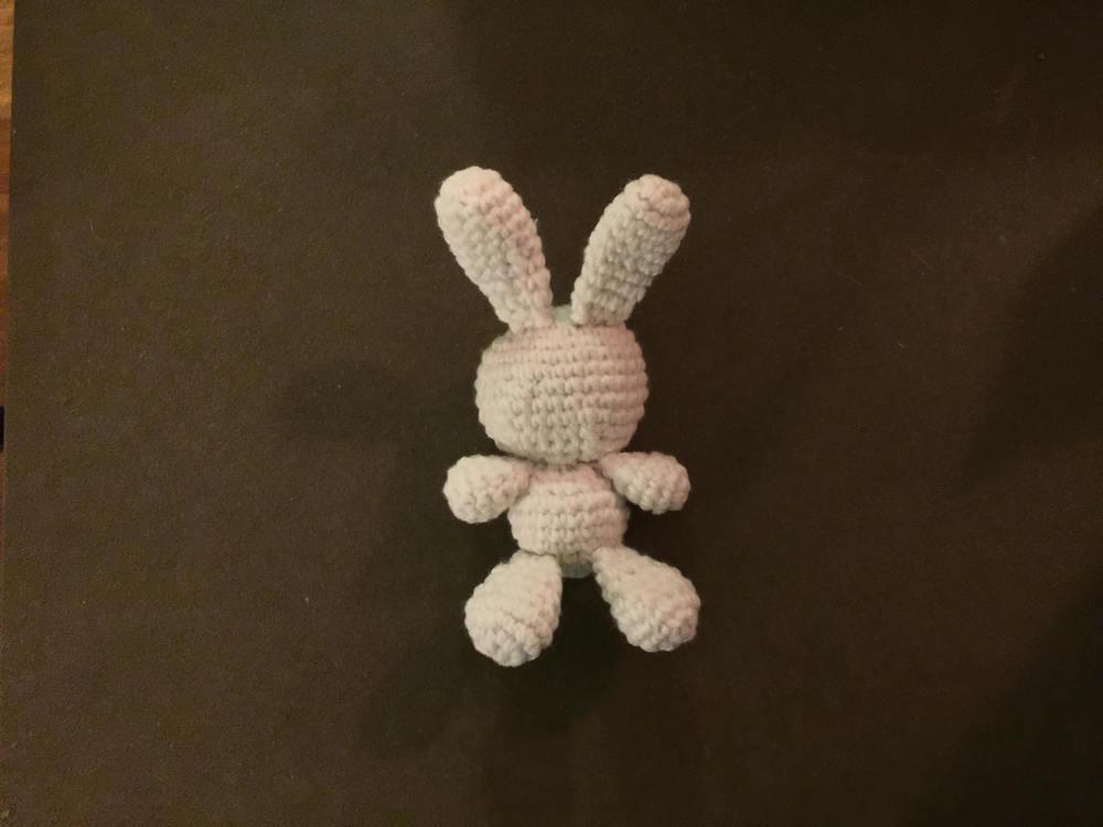 9-26_international_rabbit_day3.jpg