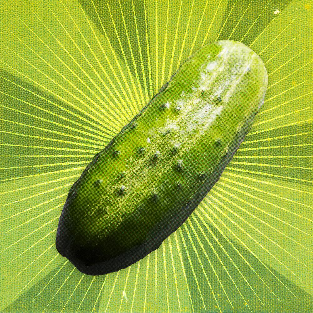 11-14_national_pickle1.jpg