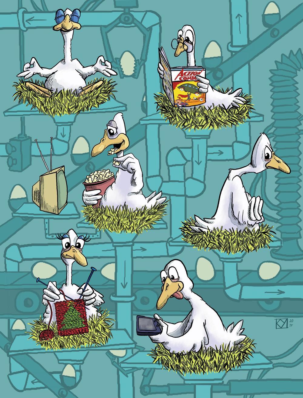 06_geese.jpg