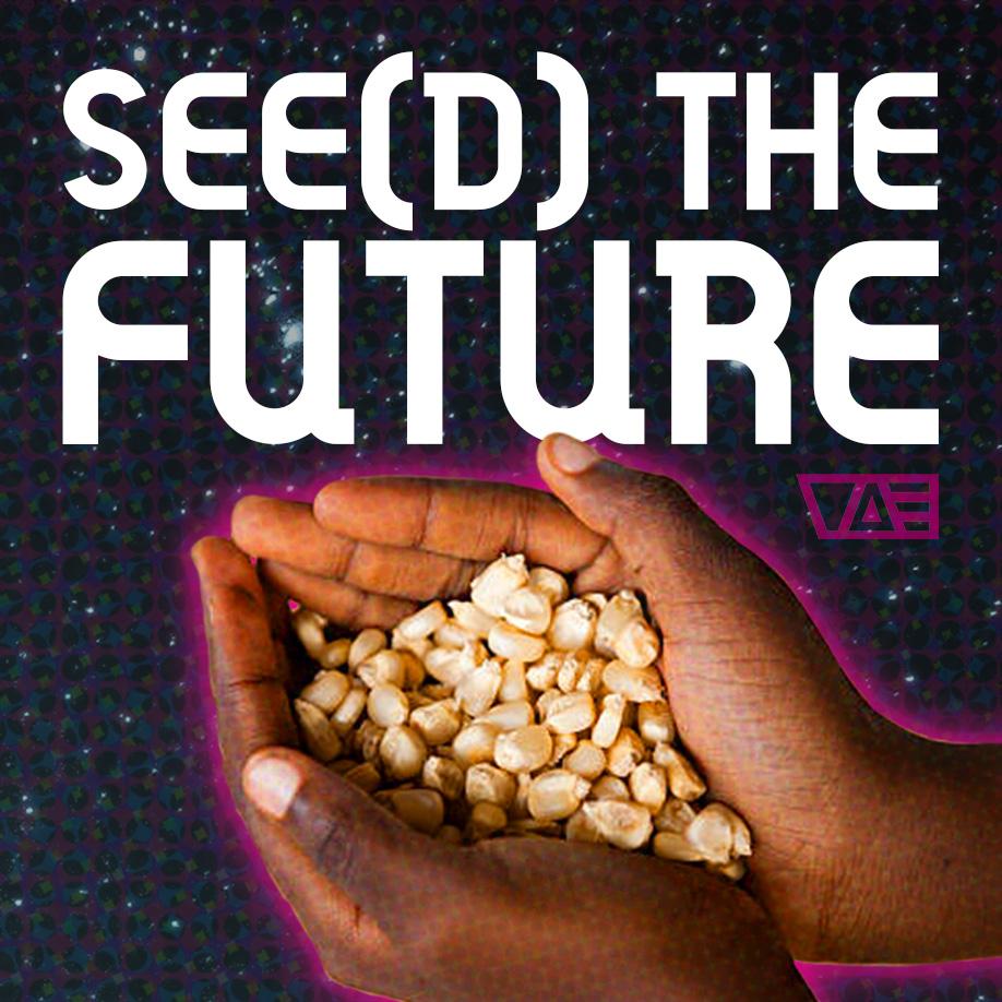 seed-sq-01.jpg