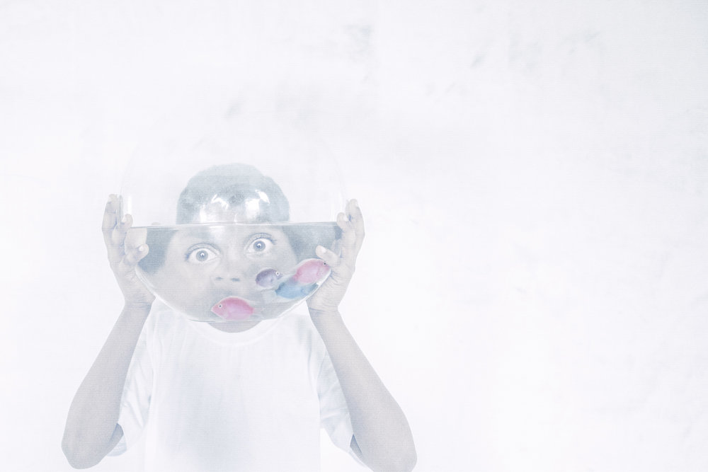 Spud In The Box Headrush