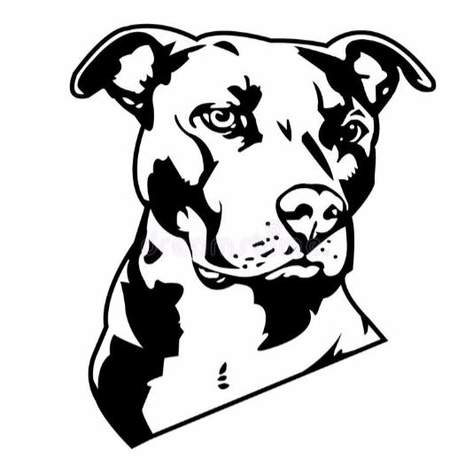 LYJA, THE OTHER DOG