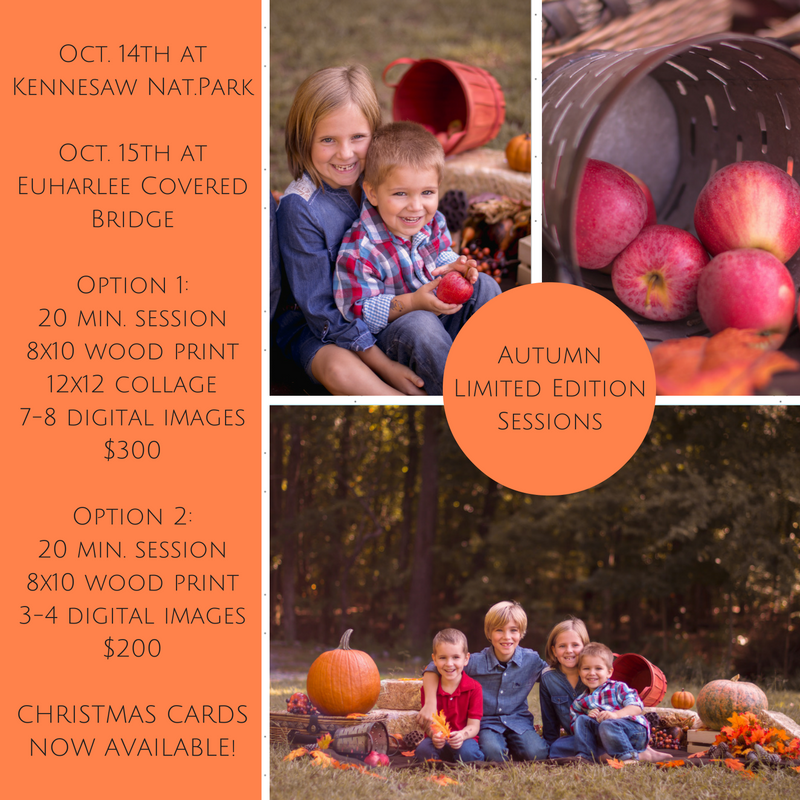 fall mini sessions in georgia