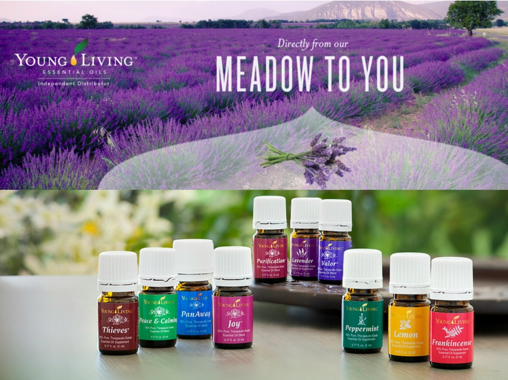 Mother is Eternal | How to Make Money With Your Young Living Business From Home