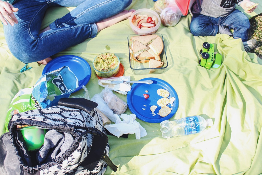 First Picnic of the Season