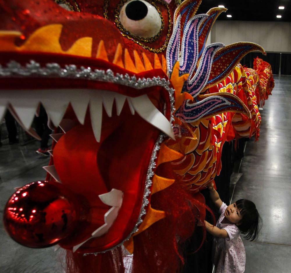 Asian Festival__Q0C3827.JPG7551_1.JPG