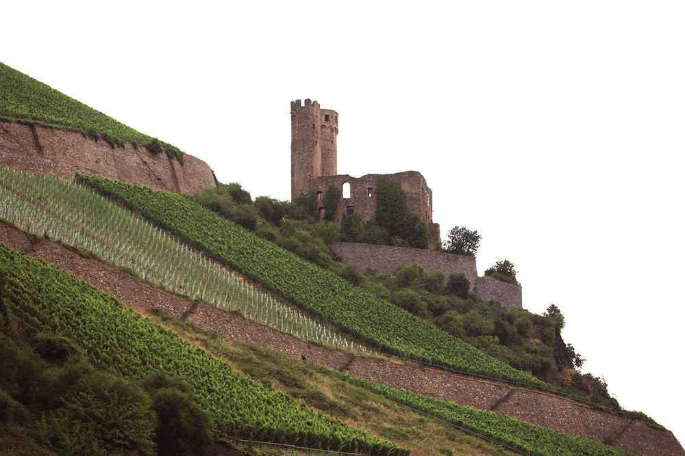 Ruedesheim Vineyards