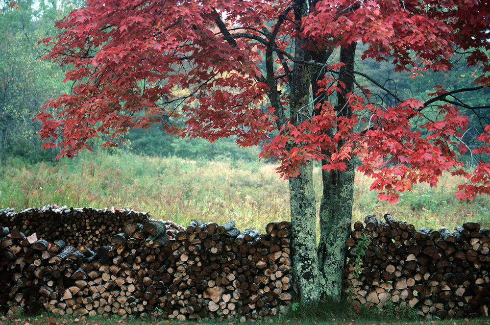 Blue Hill Woodpile